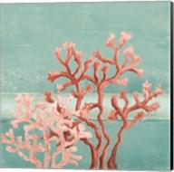 Teal Coral Reef II Fine-Art Print