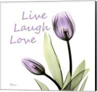 Purple Tulips Live Laugh Love Fine-Art Print