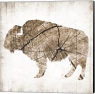Buffalo Rings Fine-Art Print