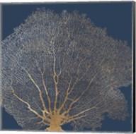 Gold Coral II Fine-Art Print