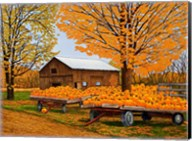 Pumpkinville, Western Ny Fine-Art Print
