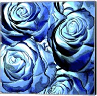 Blue Roses Square Fine-Art Print