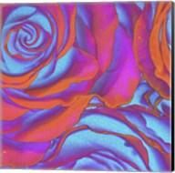 Pink Orange Blue Roses Fine-Art Print