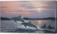 Dolphins Fine-Art Print