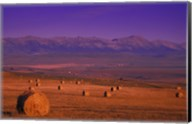 Hay Bales with Mountains Fine-Art Print