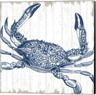 Seaside Crab Fine-Art Print