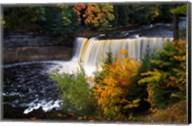 Tahquamenon Falls, Michigan Fine-Art Print