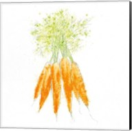 Garden Delight VIII Fine-Art Print