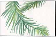 Ferns IV Square Fine-Art Print