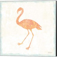 Flamingo Tropicale VI Fine-Art Print