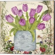 Vintage Tulip Can II Fine-Art Print