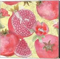 Pomegranate Medley II Fine-Art Print