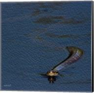 Lake Snake Fine-Art Print
