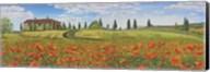 Tuscan Poppies Fine-Art Print