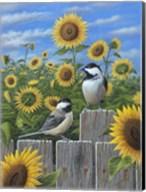 Chickadees And Sunflowers Fine-Art Print