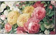 Antique Roses on Black Fine-Art Print