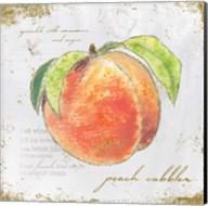 Garden Treasures II Fine-Art Print