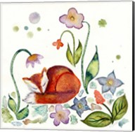 Fox Napping In The Garden Fine-Art Print