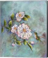 Hummingbird with Camellias Fine-Art Print