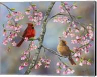 Spring Cardinals Fine-Art Print