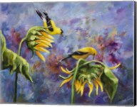 Finches with Sunflowers Fine-Art Print