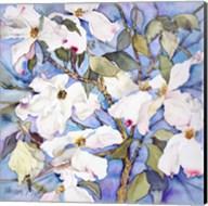 Dogwoods, White Fine-Art Print