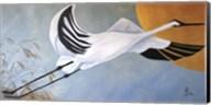 JP Stork Fine-Art Print