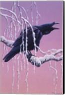 Raven Fine-Art Print
