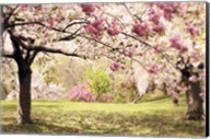 Cherry Hill Morning Fine-Art Print