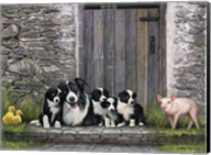 Farm Animal Stable Fine-Art Print