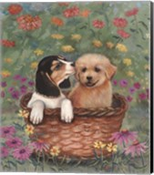 Beagle And Golden Retriever Fine-Art Print
