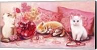 Three Kittens Fine-Art Print