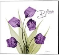 Believe Sandersonia H34 Fine-Art Print