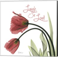 LOL Tulips L83 Fine-Art Print