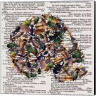 Skull 1.3 Fine-Art Print