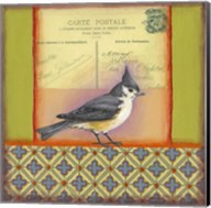 Carte Postale Bird 5 Fine-Art Print