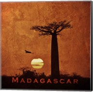 Vintage Baobab Trees at Sunset in Madagascar, Africa Fine-Art Print