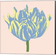 Soho Tulip I Fine-Art Print