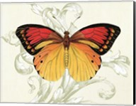 Butterfly Theme III Fine-Art Print