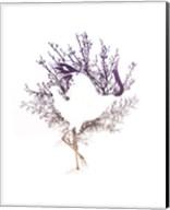 Red Crowned Crane Pair, Part II Fine-Art Print