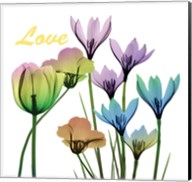 Floral Rainbow Love Fine-Art Print