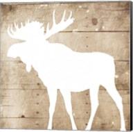 White On Wood Moose Mate Fine-Art Print