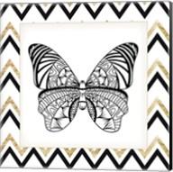 Zig Zag Butterfly 3 Fine-Art Print