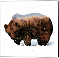 Grizzly Winter Fine-Art Print