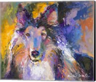 Collie Fine-Art Print