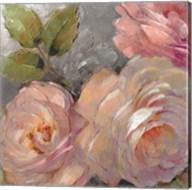 Roses on Gray II Fine-Art Print