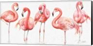 Gracefully Pink VIII Fine-Art Print