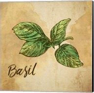 Basil on Burlap Fine-Art Print