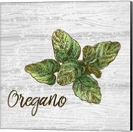 Oregano on Wood Fine-Art Print