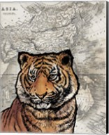 Asian Tiger Fine-Art Print